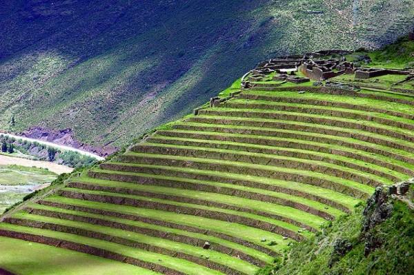 Incredible Terrace Fields