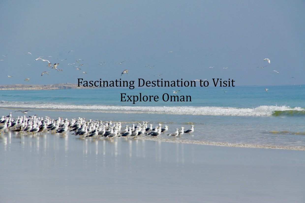 Fascinating Destination to Visit – Explore Oman